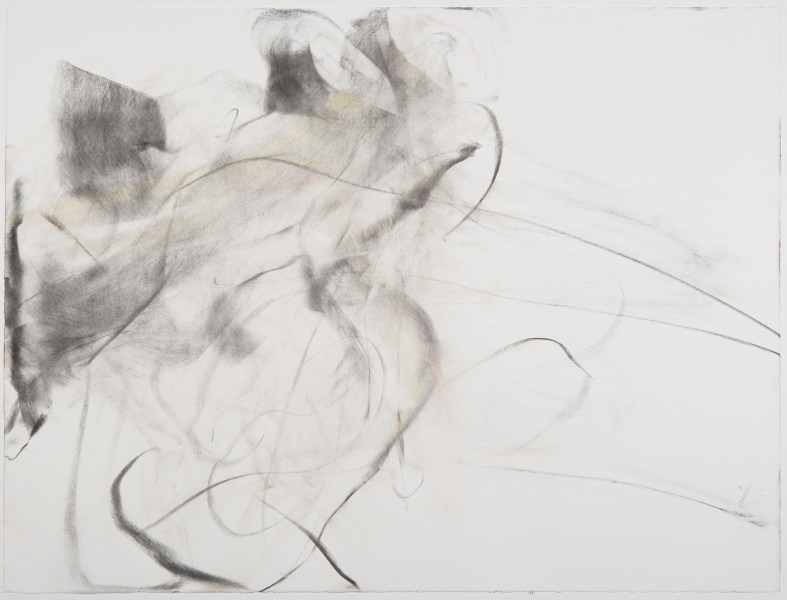 Camille, (A.Brown), 2009, charcoal and pastel on paper, 23 x 30 inches