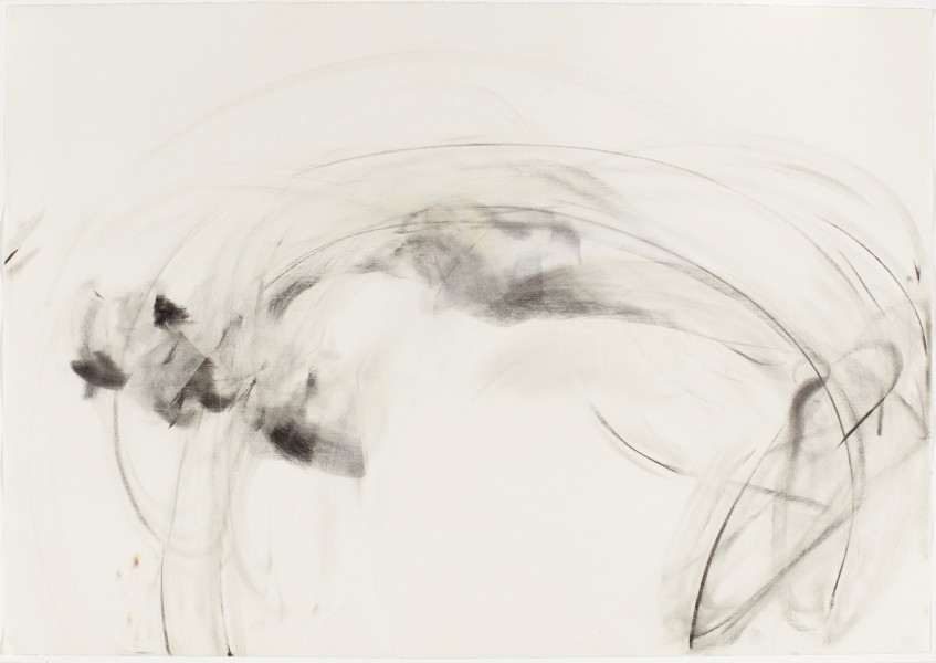 Lara #3, 2006, charcoal and pastel on paper, 27.5 x 39.5 inches