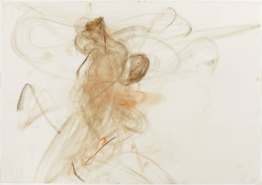 Neta #37, (Pulvermacher) 2010, charcoal and pastel on paper, 27.5 x 39.5 inches