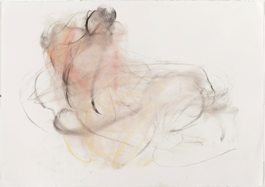 Patrick & Katherine #1, 2011, pastel and charcoal on paper, 28 x 39.75 inches