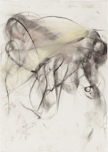 Roxanna #6, (Young), 1998, pastel and charcoal on paper, 39.5 x 27.5 inches