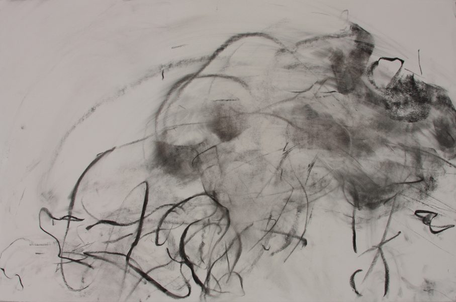 A. Boehm v Taplin, 2009, pastel and charcoal on paper, 26 x 40 inches