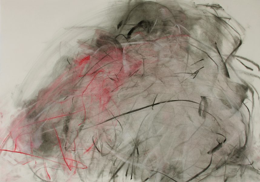 Chavez v Dominguez, 2009, pastel and charcoal on paper, 27.75 x 39.5