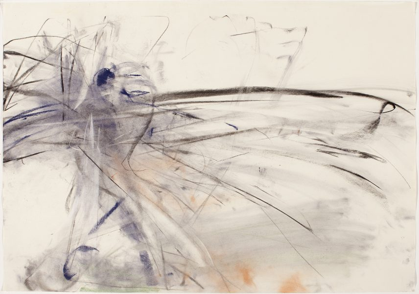 John Olerud, NY Yankees, 2004, pastel and charcoal on paper, 27.5 x 39.5 inches